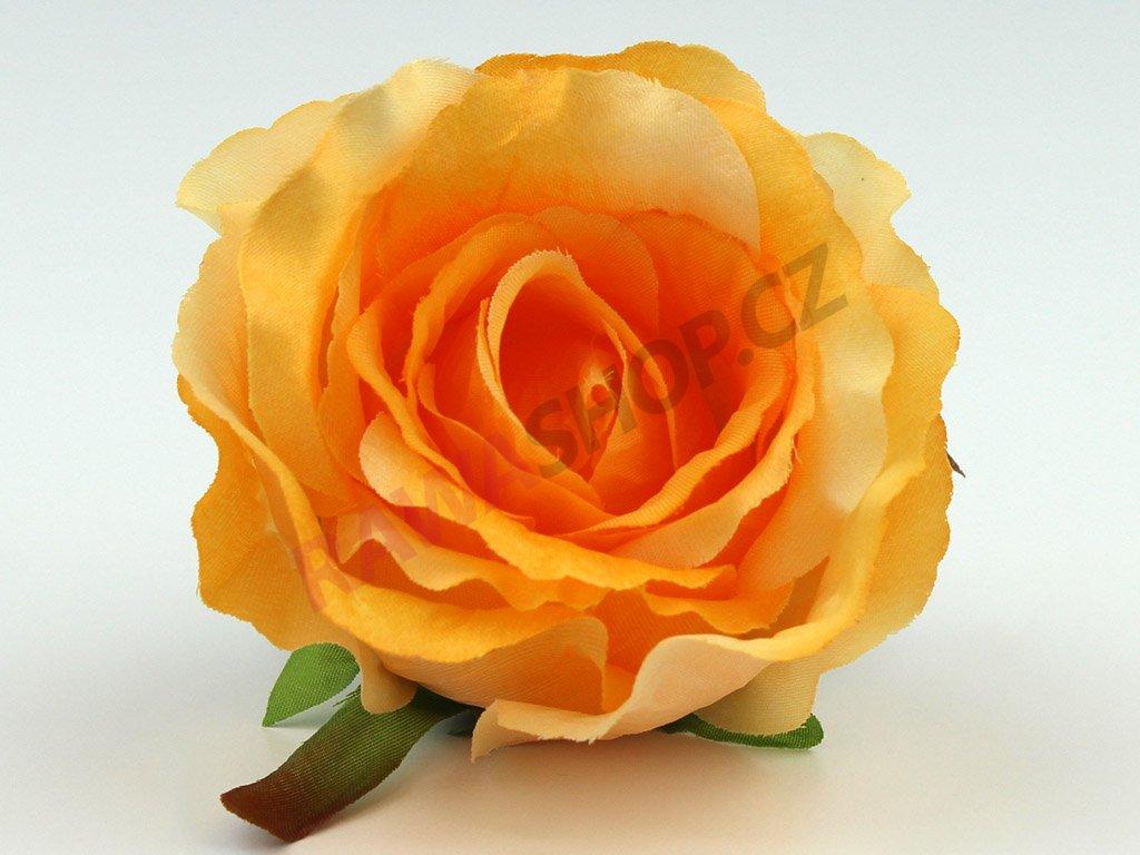 Růže 23069 - žlutá/slunečná