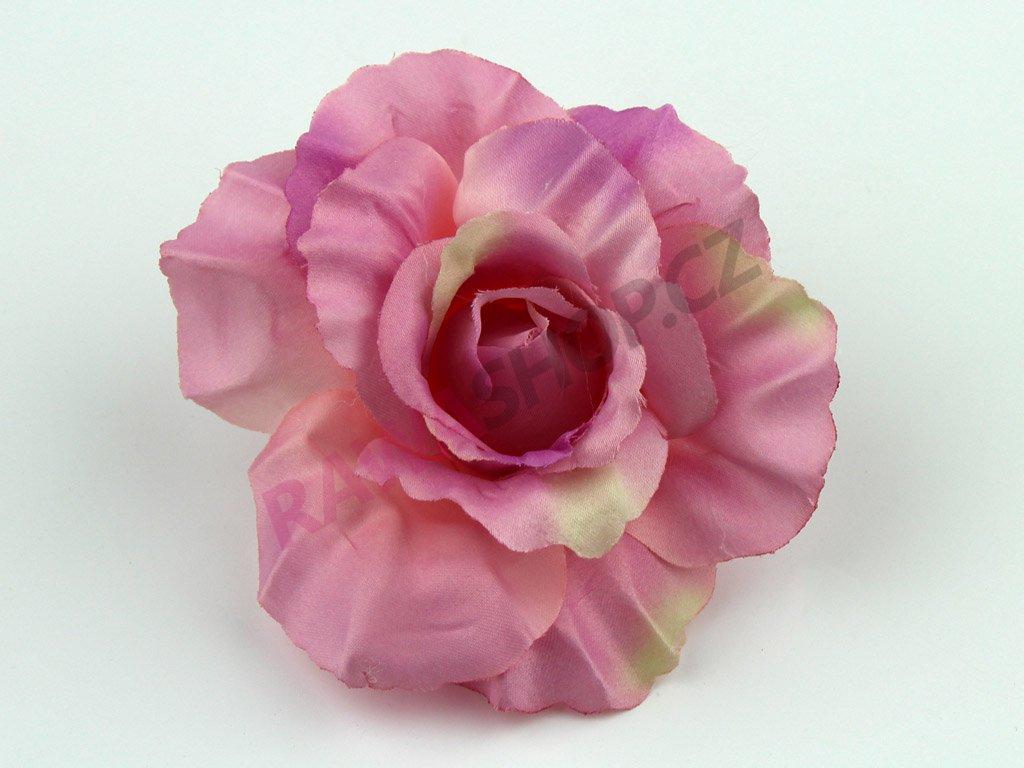 Růže 456 - tmavý vřes/zelená
