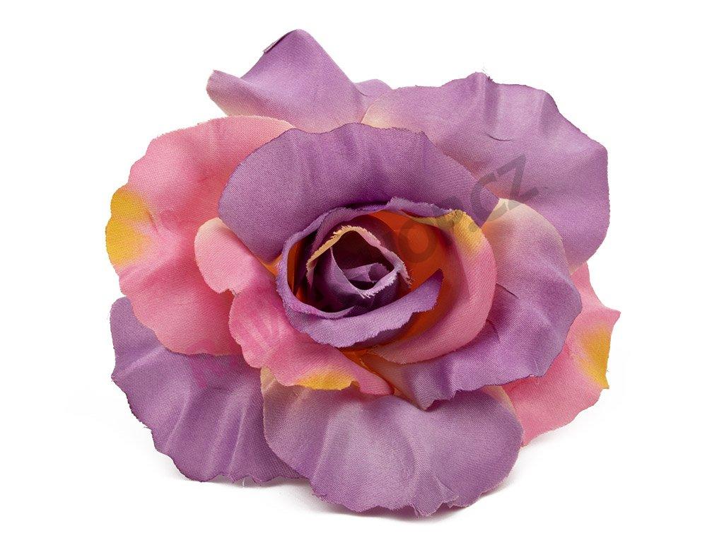 Růže 456 - tmavý vřes/burgund