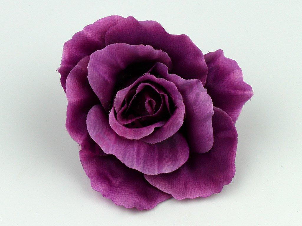 Růže 456 - tmavě fialová