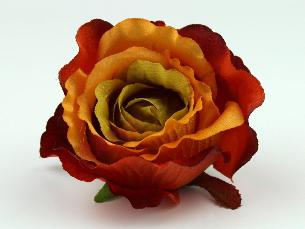 Růže 23069 - tmavý bronz/zelená
