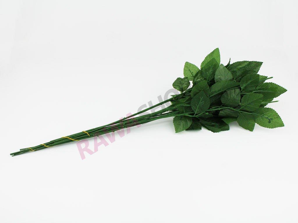Lodyha růže 24ks