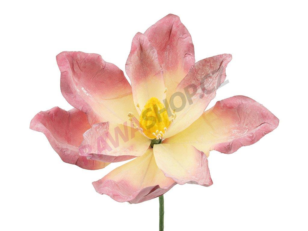 Latexová květina - růžovožlutá