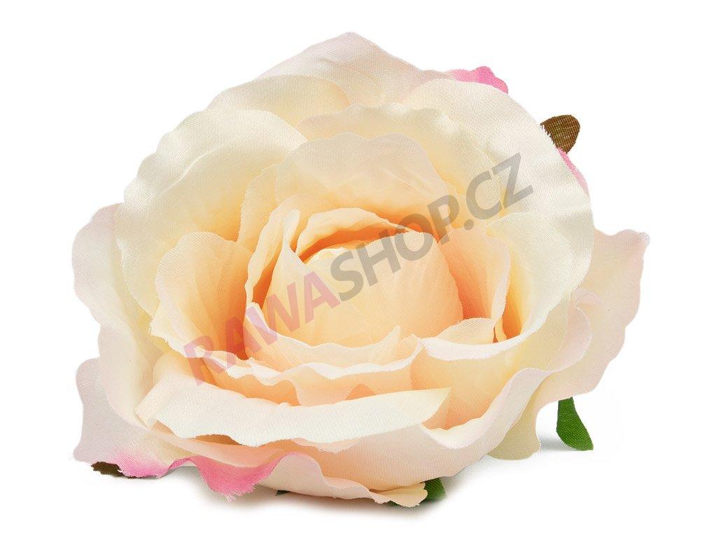 Růže 23069 - bílo růžová