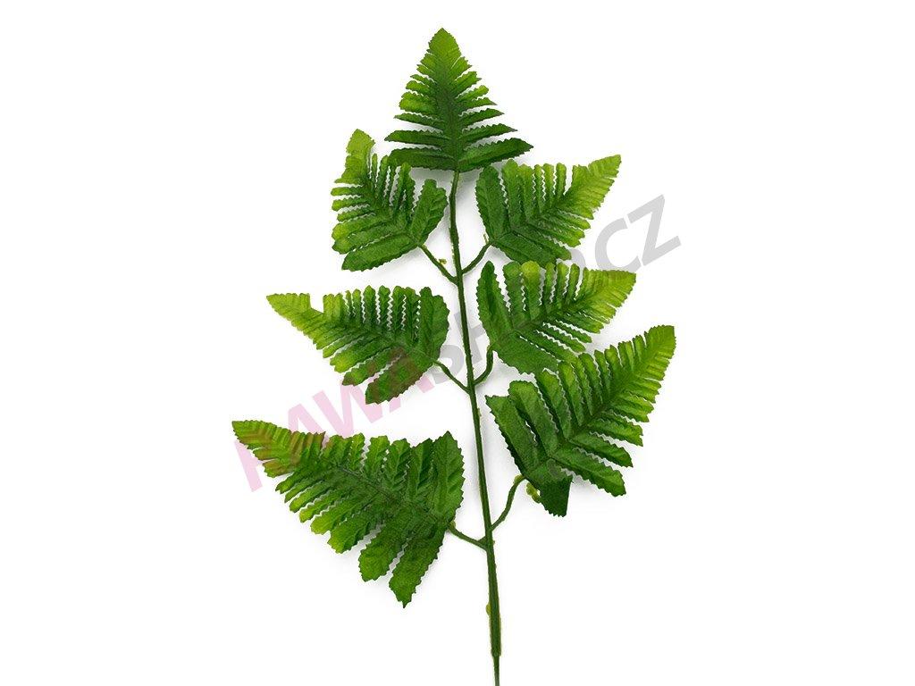 List kapradí 60cm 12ks - zelená