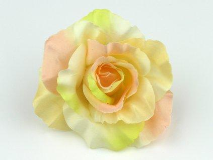 Růže 456 - čaj/bordó