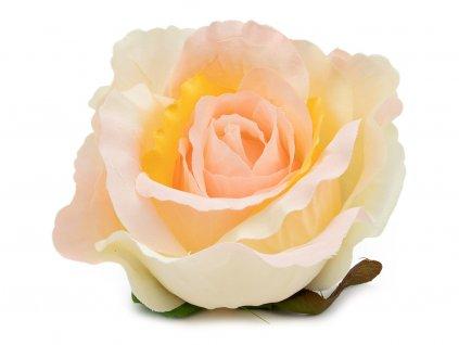 Růže 23069 - béžová