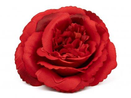 Růže 233 - červená