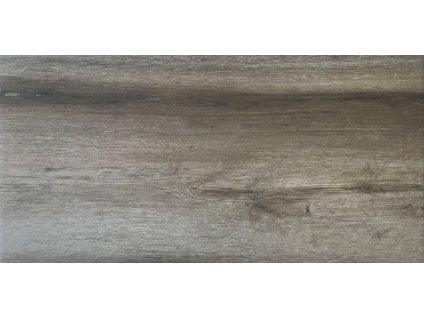 Forest BIRCH 30x60 (1)