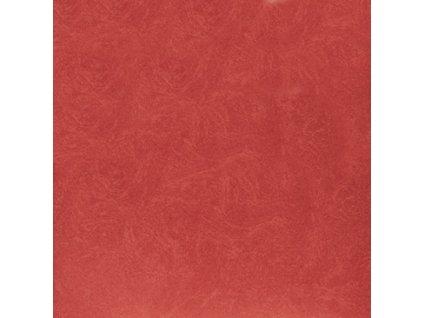 VE.P.Rojo