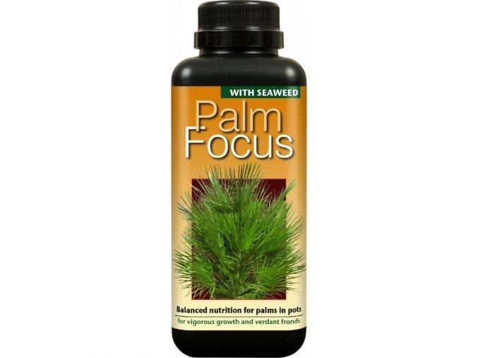 Growth Technology - Palm Focus