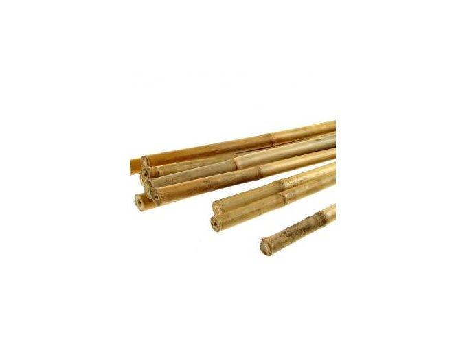Bambusová tyčinka 120cm (balení 25ks)