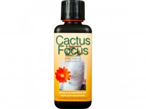 Growth Technology - Cactus Focus