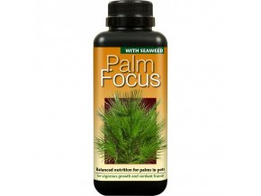 Growth Technology - Palm Focus