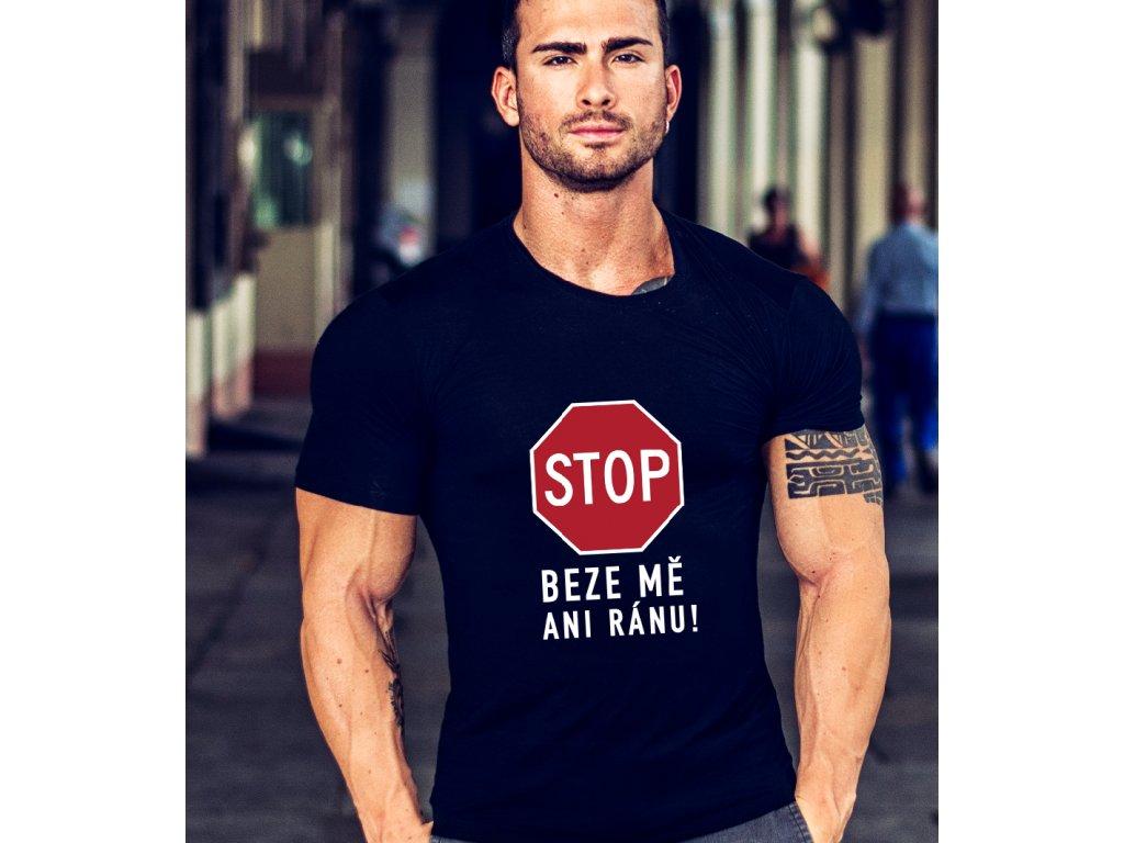 pánské tričko s potiskem KLIMT DAVID