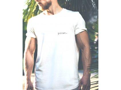 pánské tričko s krátkým rukávem Daňková Aneta, prcat II, body