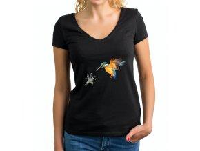 cajankova kolibrik body