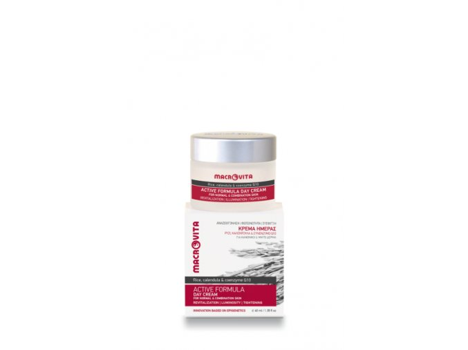 31260 active formula day cream