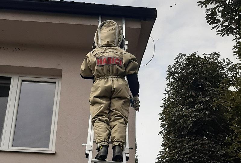 Vlčkovskí hasiči zasahovali proti sršňom