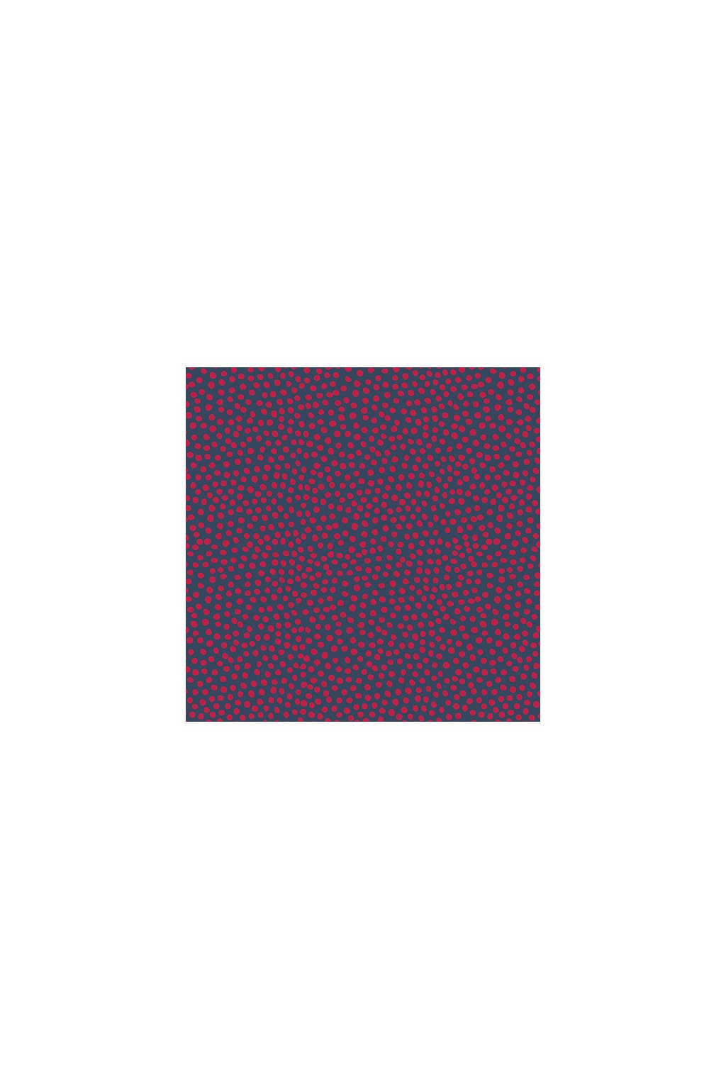 SKS 84305 Sunspots Raspberry 500px