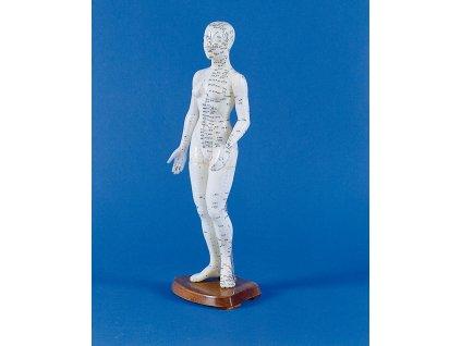 Čínská akupunktura - ženská postava
