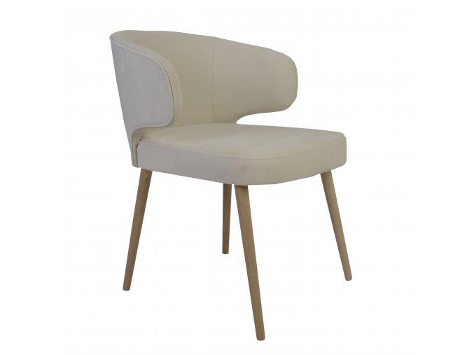 Designová čalouněná židle Basse
