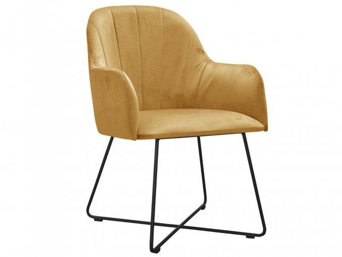 Kvalitní čalouněná židle | Ressed