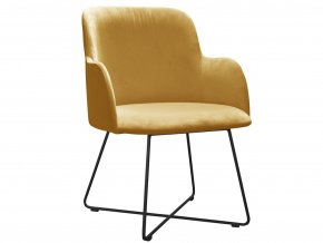 Čalouněná židle s křížovou podnož | Ressed