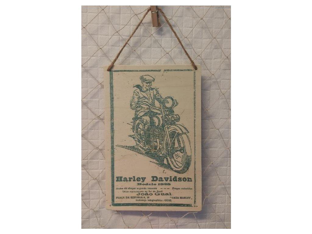 harley davidson 1925