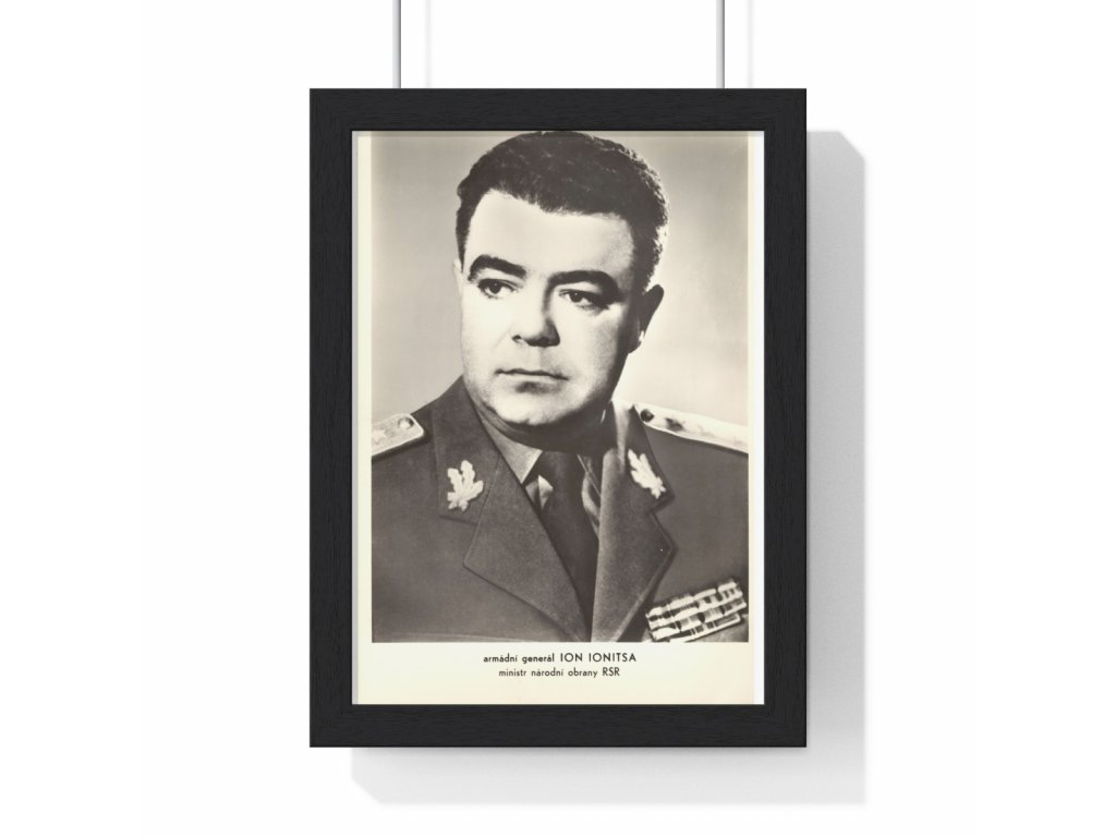 Ion Ionitsa - obraz / plechová cedule - retro dárek