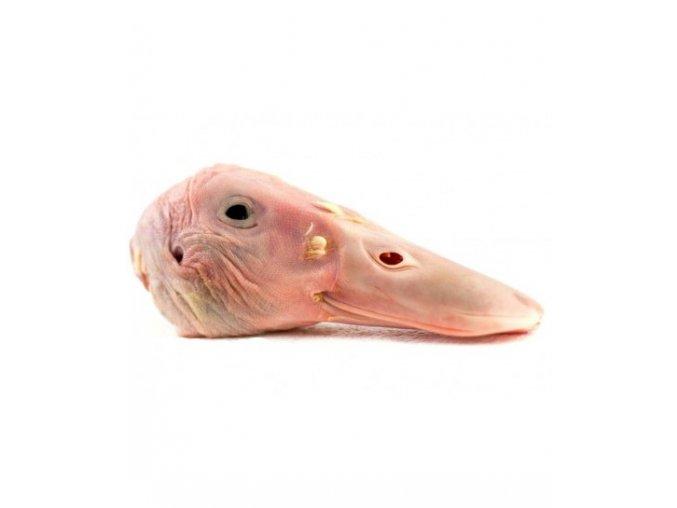 20x1kg kachni hlavy
