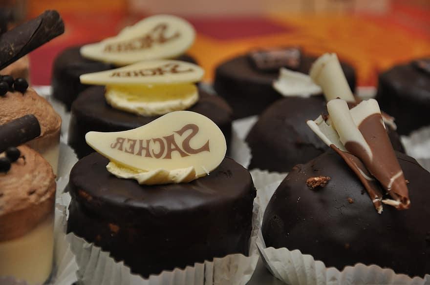 chocolate-praline-fine-chocolates-candy-nibble-sweet