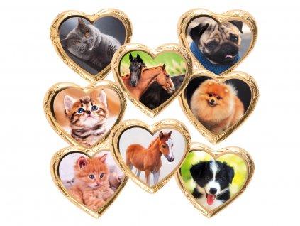 Nugátové srdíčko Pes,kočka,kůň 24g