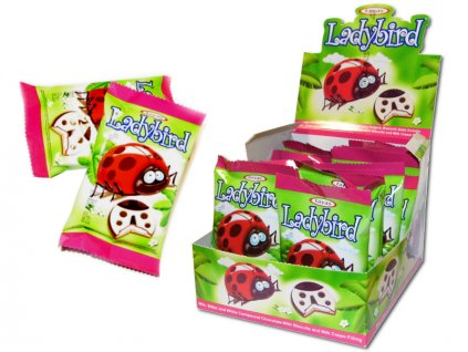 Ladybird Polévané sušenky 25g