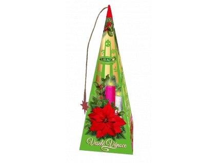 Liran Stromeček Vánoční hvězda 18x2g