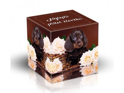 Čokoládové mléčné pralinky Pes, nejlepší přítel člověka 220g