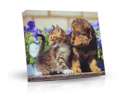Plněné čokoládové lodičky Pes s kočičkou 125g