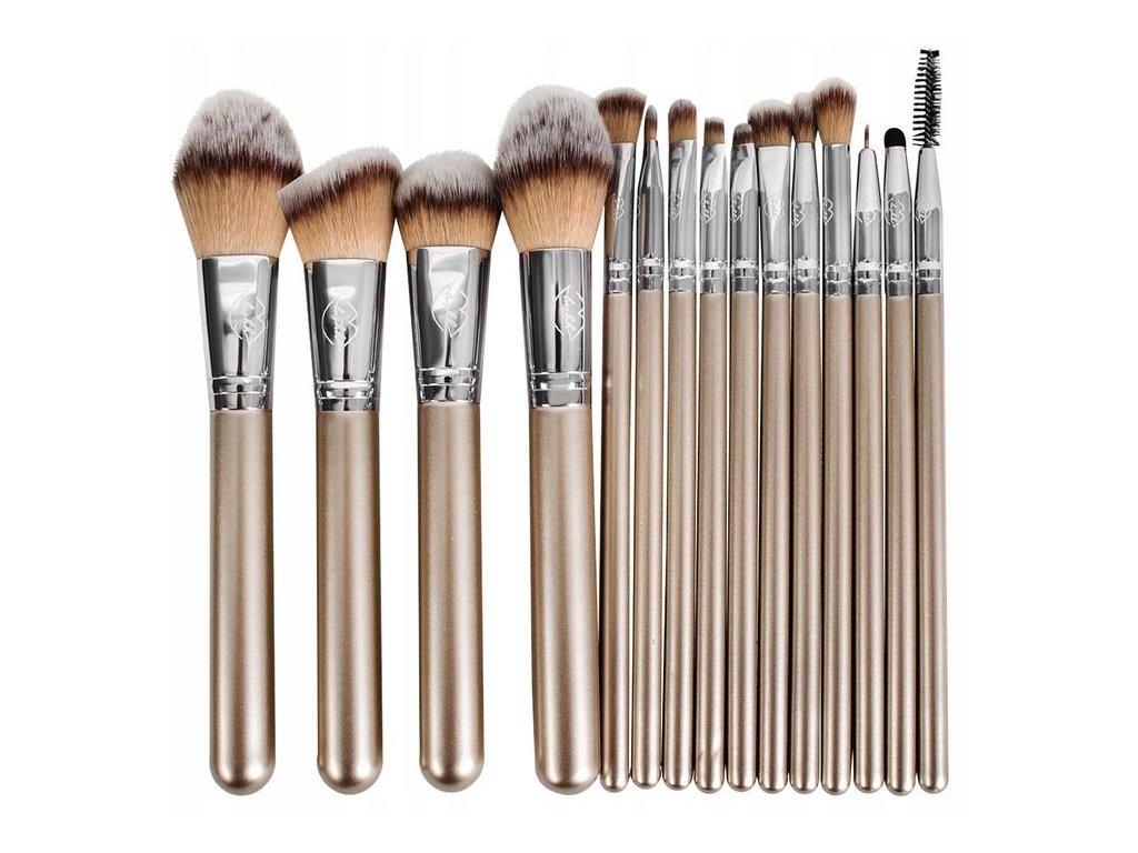Beautylushh 9646 Sada profi kosmetických štětců v pouzdře 15 kusů