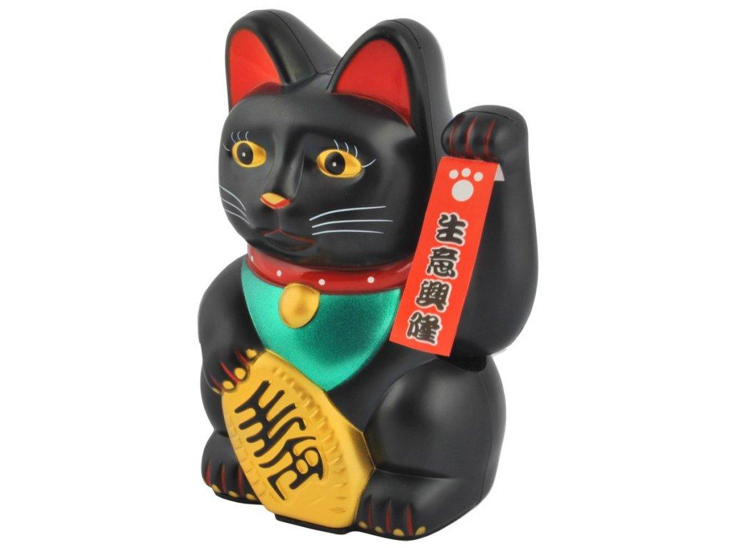 Čínská kočka černá