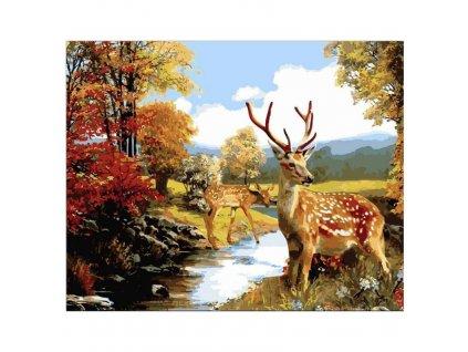 Malování podle čísel - jelen