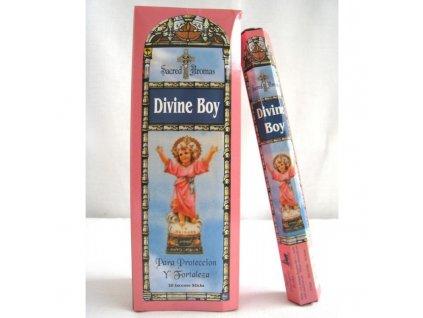 Vonné tyčinky Tulasi - Divine boy