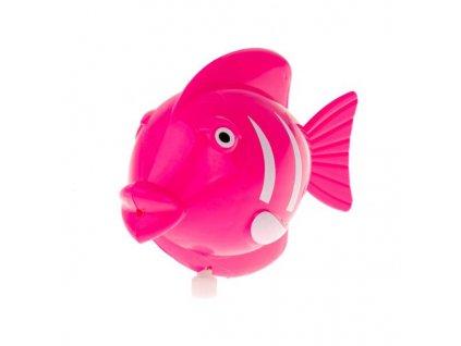 Ryba do vany růžová