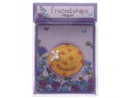 Magnet Friendships