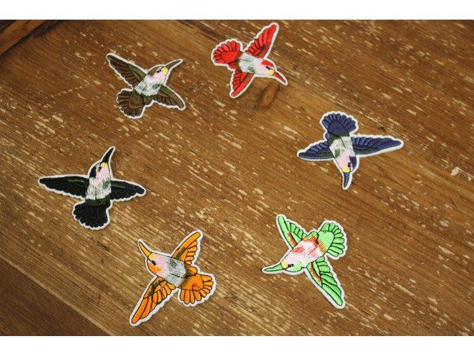 Nažehlovací aplikace kolibřík