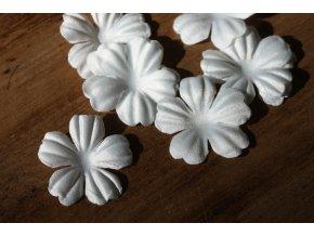 Bílé květiny, balení 10kusů