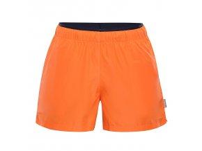 Pánské šortky Alpine pro Hinat 2 MPAN338343 (velikost M)