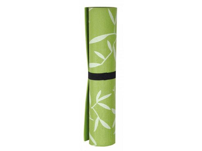 ravi zelena2