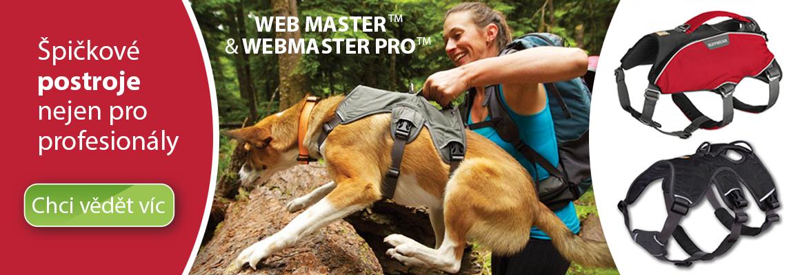 Postroje Web master a Webmaster Pro