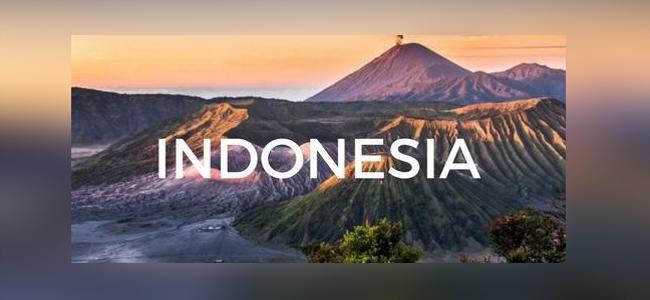 Zasadili jsme dalších 100 stromů v Indonésii