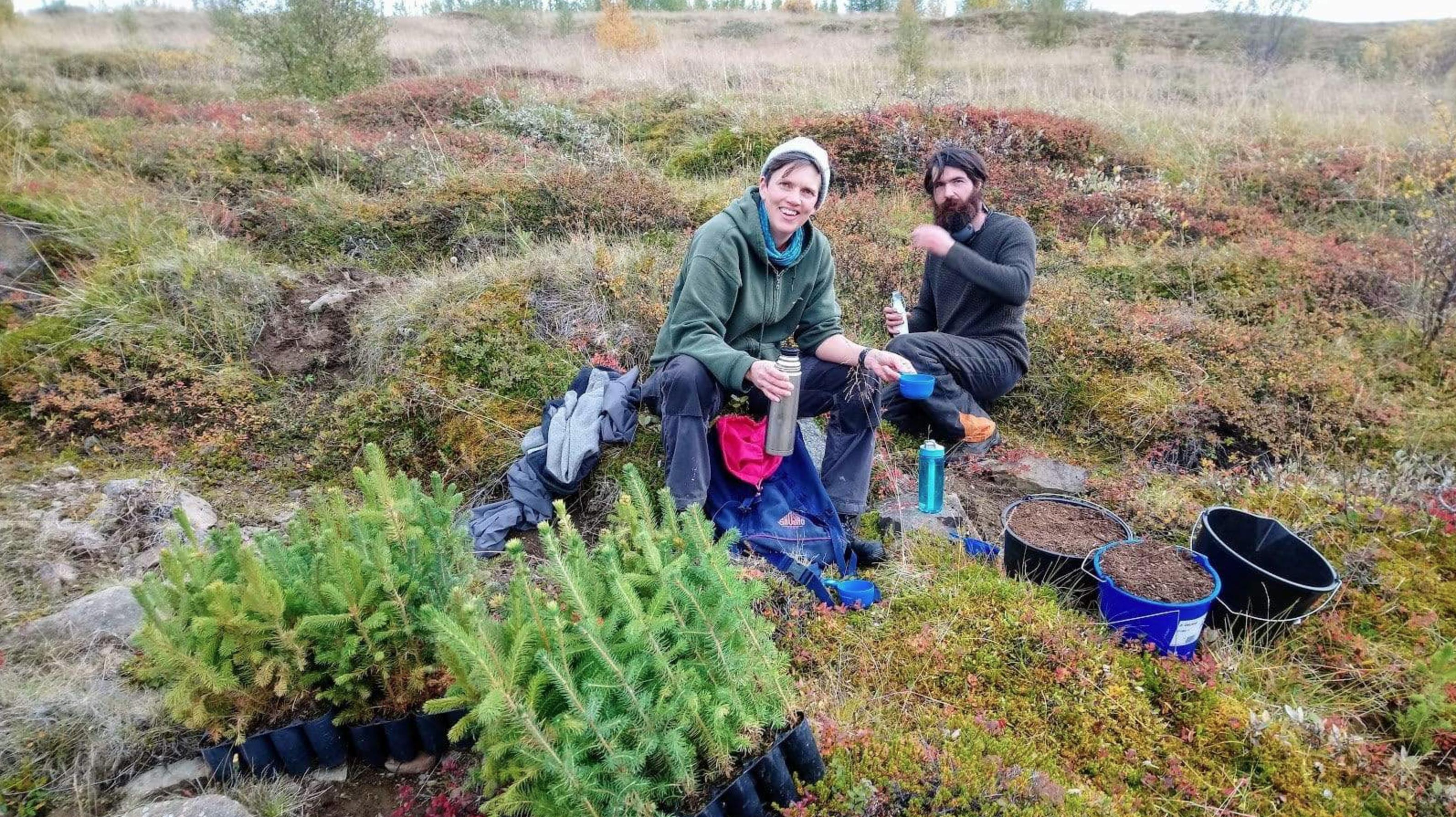 Zasadili jsme dalších 100 stromů na Islandu